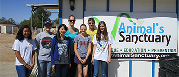 PAX student from Japan volunteering at an animal shelter in in Nevada with her American friends